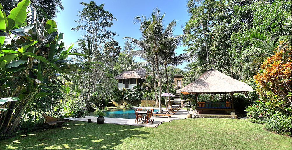 Villa Alamanda - Lawn and pool