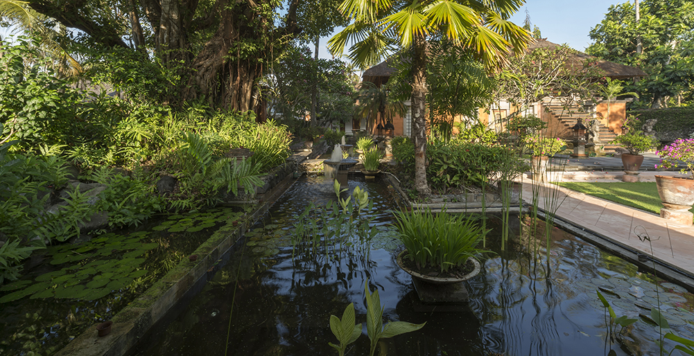 Villa Batujimbar - Entrance water garden at dawn